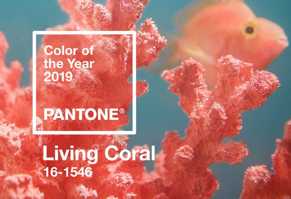 Pantone Has Released Their Color of The Year For 2019