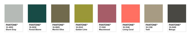 color of the year for 2019 Pantone Has Released Their Color of The Year For 2019 focalpoints 1543979973