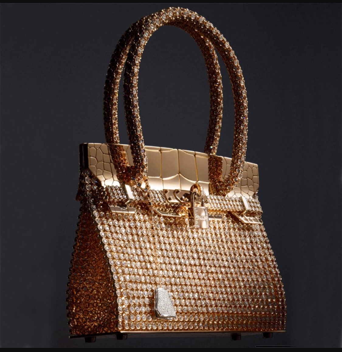 Discover The Top 5 Most Expensive Handbags in the World most expensive handbags Discover The Top 5 Most Expensive Handbags in the World image 280